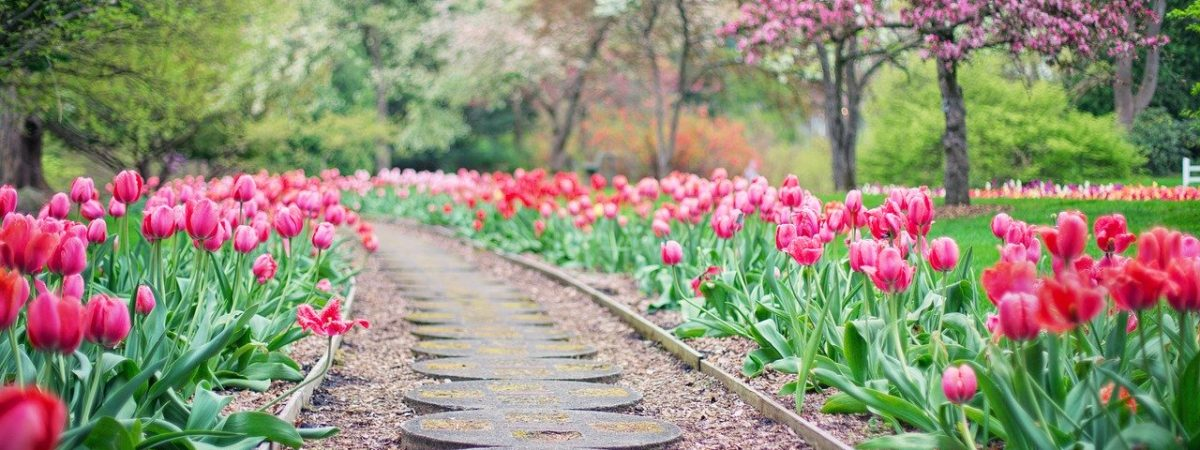 Comment aménager son jardin soi-même